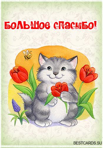 """Открытка """"Большое спасибо!"""" с котом"""