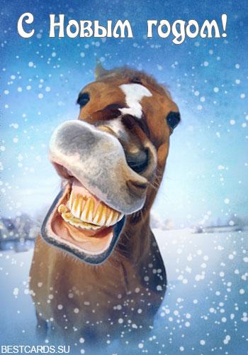 """Открытка """"С Новым годом!"""" с лошадью"""