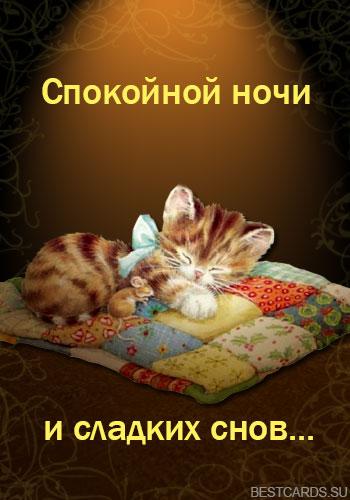 """Открытка """"Спокойной ночи и сладких снов..."""" с котенком и мышкой на подушечке"""